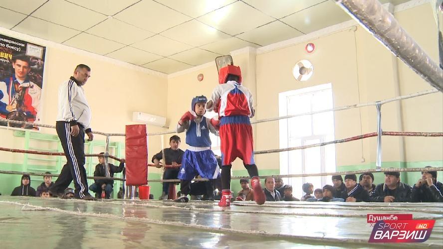 В Душанбе выявлены лучшие юные боксеры